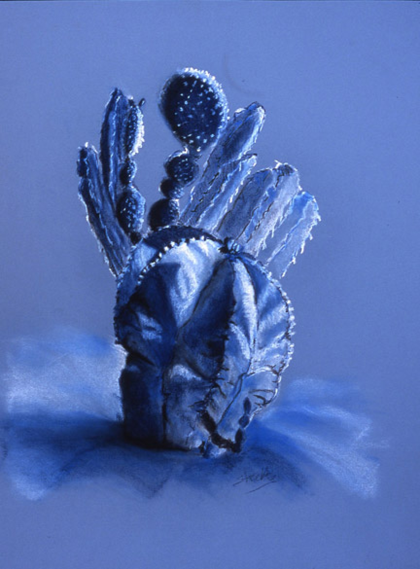gallery/images-artwork-Still_Life-cactus_garden_study_blue